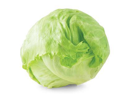Gūžinės salotos ICEBERG, 1 vnt.